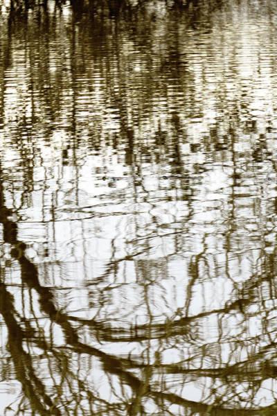 Winter Water Reflection - 19-5012  Art Print
