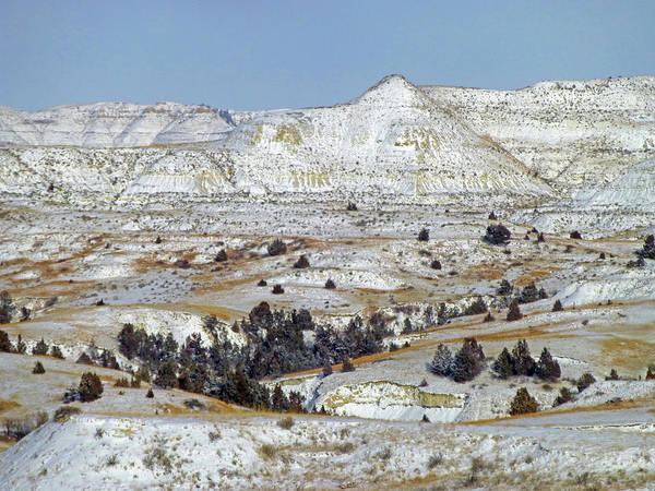 Photograph - Winter Wonder In West Dakota by Cris Fulton
