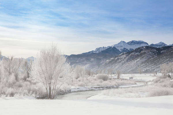 Wall Art - Photograph - Winter Wonderland Below Whitehouse Mountain by Bridget Calip
