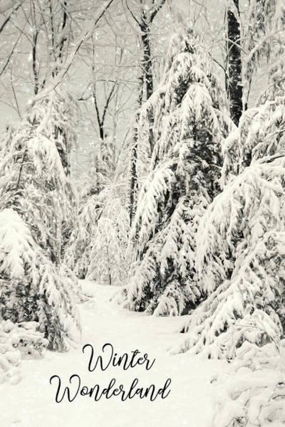 Wall Art - Mixed Media - Winter Wonderland by Lori Deiter