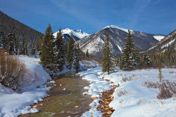 Wall Art - Photograph - Winter Wonderland On Mineral Creek by Bridget Calip