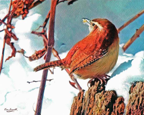 Wren Painting - Wintering Carolina Wren by Ken Everett