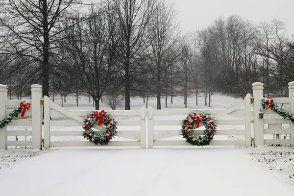 Wall Art - Photograph - Winter's Gate by Beth Collins
