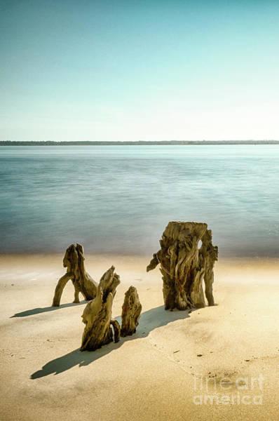 Lowcountry South Carolina Photograph - Winyah Bay by DiFigiano Photography