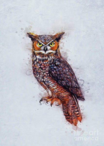 Bird Watching Digital Art - Wise Owl by Ian Mitchell
