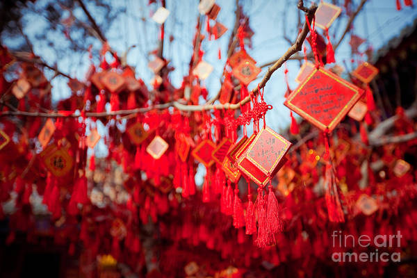 East Asia Wall Art - Photograph - Wish Cards In A Buddhist Temple In by Tepikina Nastya