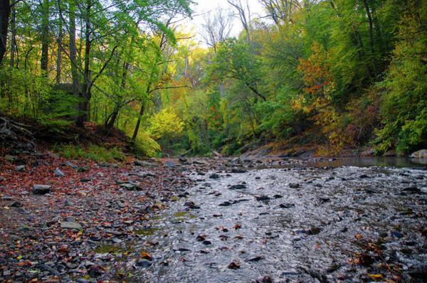 Wall Art - Photograph - Wissahickon Autumn Scene by Bill Cannon