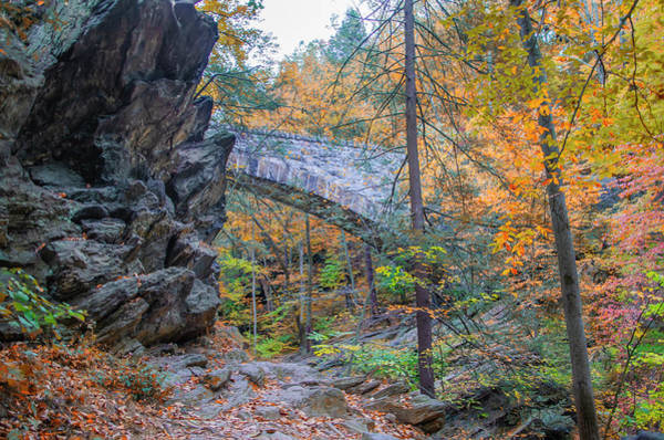 Photograph - Wissahickon Valley Park Near Devils Pool In Autumn by Bill Cannon