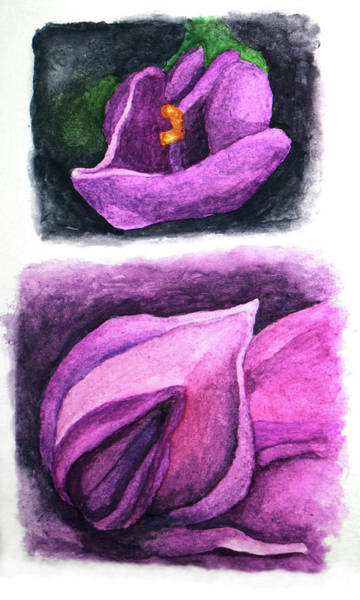Painting - Wisteria Buds Up Close I And II by Robert Morin