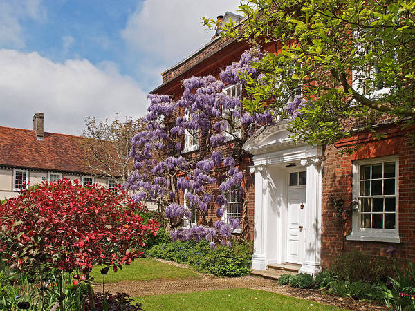 Photograph - Wisteria House by Gill Billington