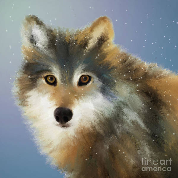 Digital Art - Wolf by Anne Vis