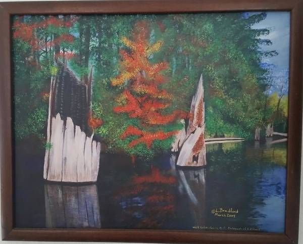 Painting - Wolf Lake On Vancouver Island  by Lorraine Bradford