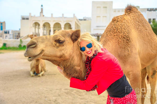 Photograph - Woman Embraces Camel by Benny Marty