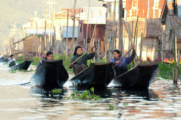 Oar Photograph - Woman In Boats In Inle Lake Myanmar by Nancy Brown/bass Ackwards
