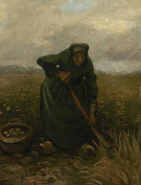 Rural Life Wall Art - Painting - Woman Lifting Potatoes by Vincent Van Gogh