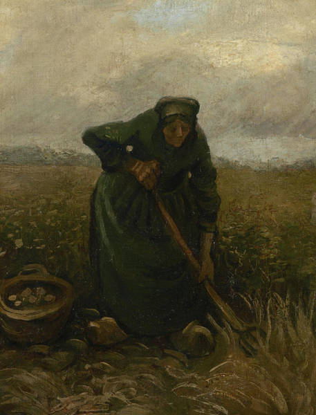 Potato Painting - Woman Lifting Potatoes by Vincent Van Gogh