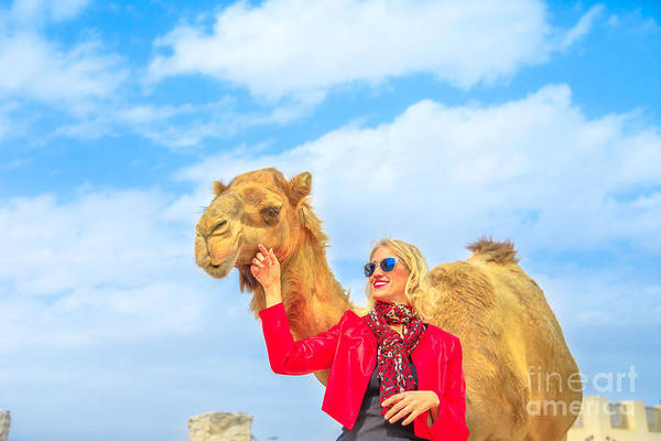 Photograph - Woman Touches Camel by Benny Marty