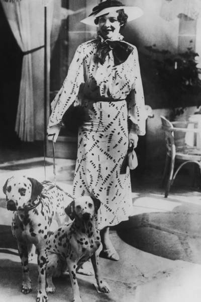 Dalmatian Dog Photograph - Woman With Two Dalmatians Wearing by Fpg