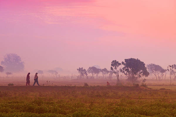 Candid Photograph - Women Villagers Crossing Field At Dawn by Adrian Pope