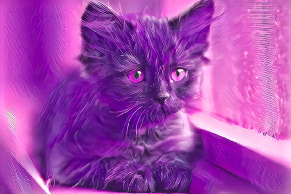 Digital Art - Wonderful Pink Eyes by Don Northup