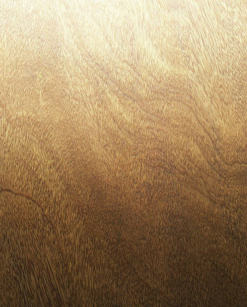 Wall Art - Photograph - Wood Backdrop by Lumina Imaging