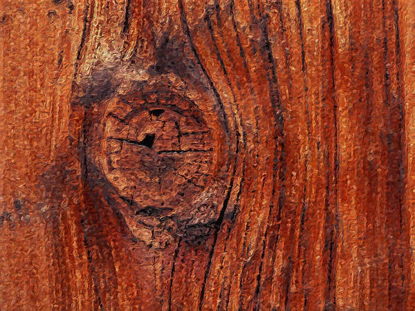 Digital Art - Wood Knot by ISAW Company