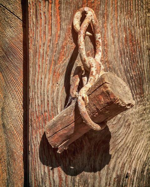 Photograph - Wood Plug On A Chain by James Eddy