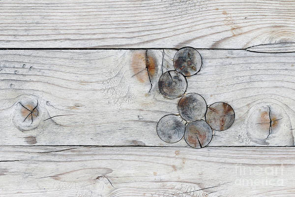 Wall Art - Photograph - Wood With Knots by Michal Boubin