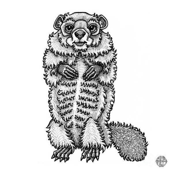 Woodchuck Art Print