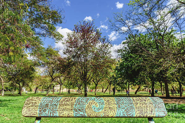 Photograph - Wooden Bench To Rest Decorated With A Beautiful Design Of Labyrinthine Lines In A Public Garden. by Joaquin Corbalan