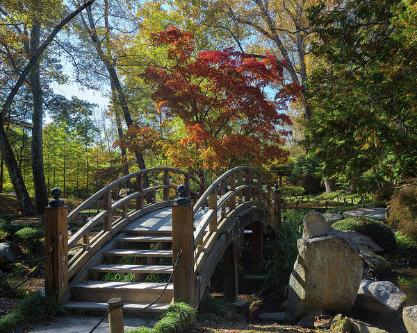 Photograph - Wooden Bridge In Japanese Garden by Jemmy Archer