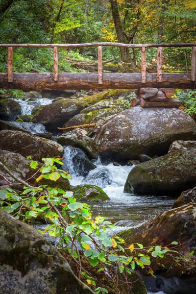 Photograph - Wooden Bridge Over The Stream In Autumn by Debra and Dave Vanderlaan