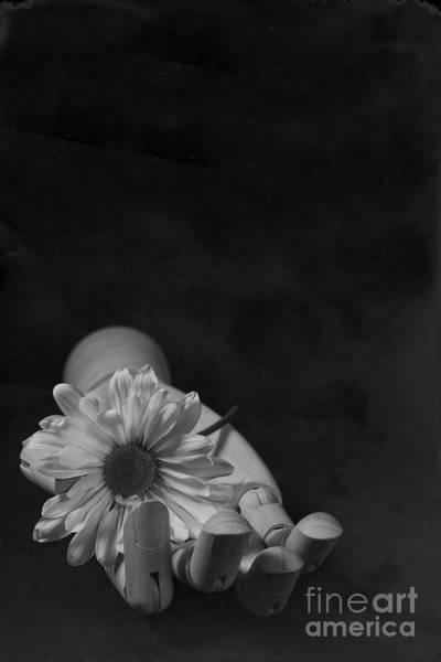 Wall Art - Photograph - Wooden Hand Flower Tin Type by Edward Fielding