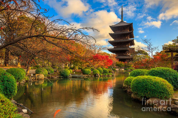 Kansai Wall Art - Photograph - Wooden Pagoda Of Toji Temple, Kyoto by Krunja