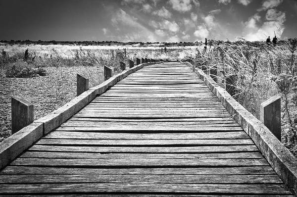Photograph - Wooden Path At Dungeness by David Resnikoff