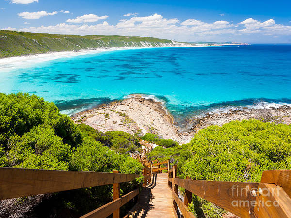 Coastline Wall Art - Photograph - Wooden Path At Observatory Point Great by Ian Woolcock
