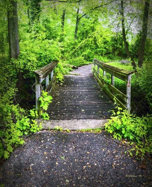 Wall Art - Photograph - Wooden Pedestrian Bridge by Brian Wallace