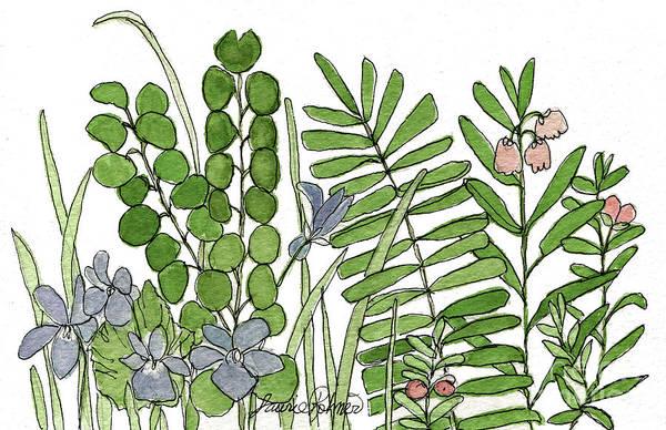 Woodland Ferns Violets Nature Illustration Art Print