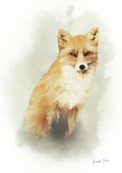 Woodland Animals Mixed Media - Woodland Fox Portrait by Amanda Lakey