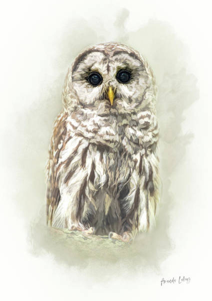 Woodland Mixed Media - Woodland Owl by Amanda Lakey