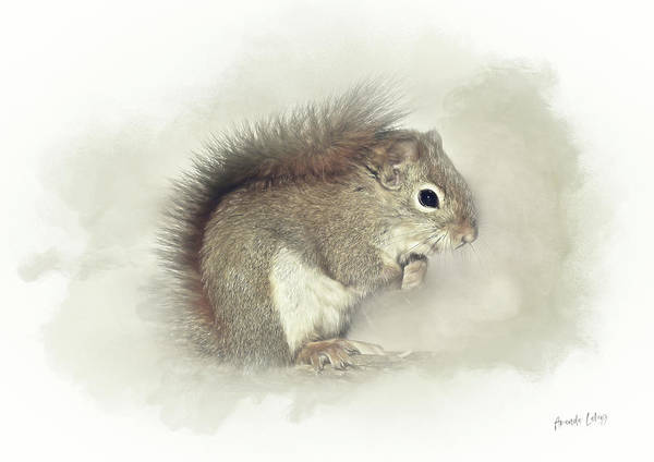 Woodland Animals Mixed Media - Woodland Squirrel by Amanda Lakey