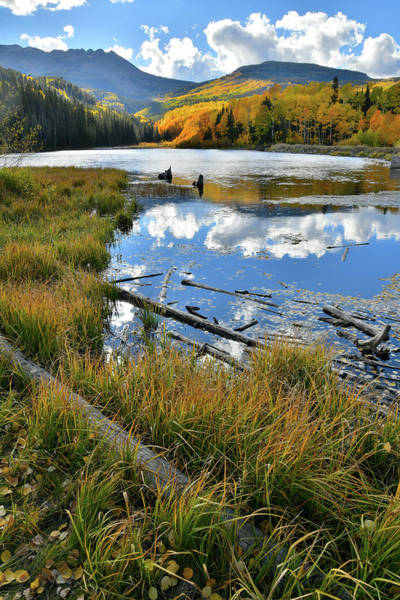 Photograph - Woods Lake State Wildlife Area In Fall Colors by Ray Mathis