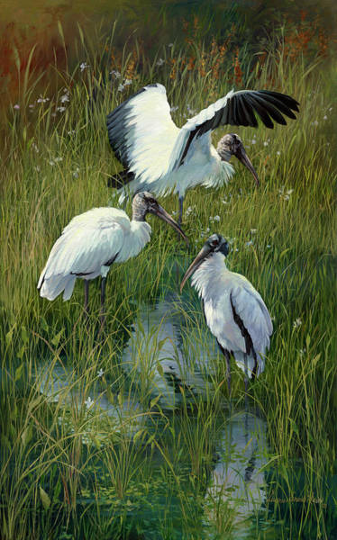Stork Painting - Woodstorks Trio by Laurie Snow Hein