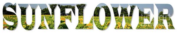 Wall Art - Photograph - Word Art ...  Sunflower by Deborah Klubertanz