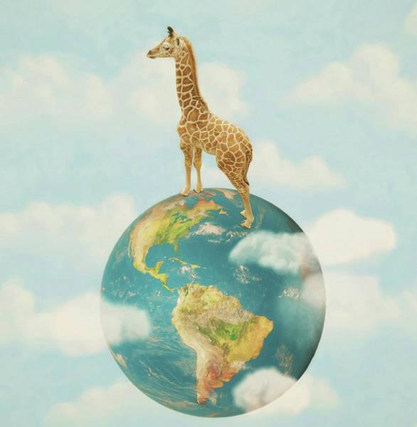 Wall Art - Photograph - World Giraffe Day by Carrie Ann Grippo-Pike