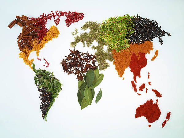 Large Photograph - World Map With Spices And Herbs by Yamada Taro