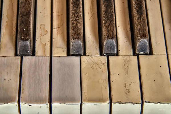 Wall Art - Photograph - Worn Piano Keys by Leland D Howard