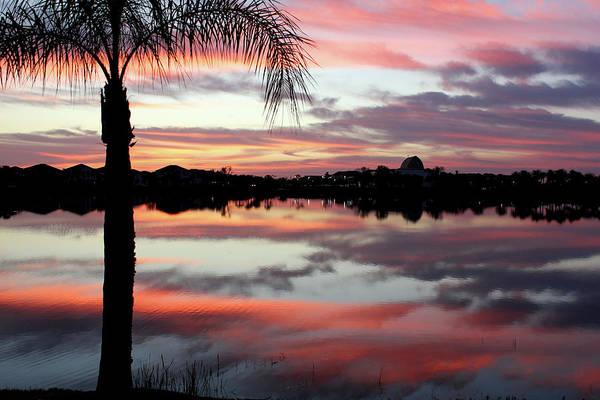 Photograph - Wow Factor Florida by Kathi Mirto