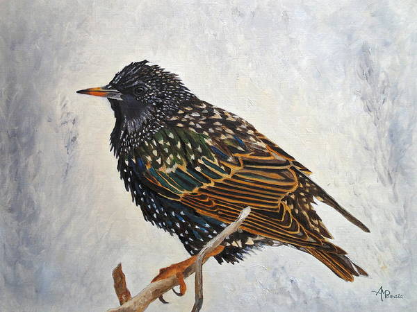 Painting - Wrapped Up - European Starling by Angeles M Pomata