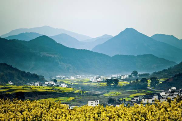 Ornamental Grass Photograph - Wuyuan, China Terraced Field by Chinaface